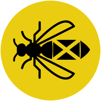 the-wasp-experts-scotland-icon-circle